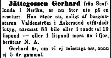 18900418_Dalpilen