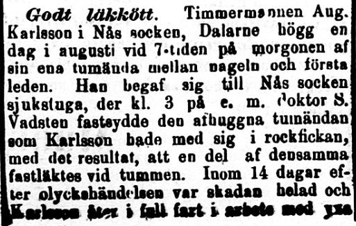 Klippet kommer från Norra Skåne den 13 september 1894.
