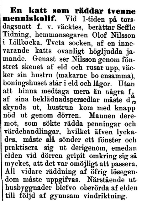 18980309_Kalmar