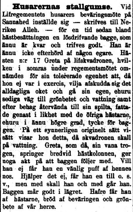 18980614_Dalpilen