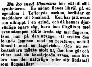 Klippet kommer från Norra Skåne den 28 september 1895