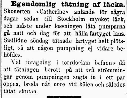 Klippet kommer från Dalpilen den 24 september 1897