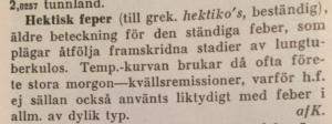 Hektisk feber, Svensk Uppslagsbok, 1932 års upplaga
