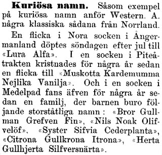18960117_Kalmar