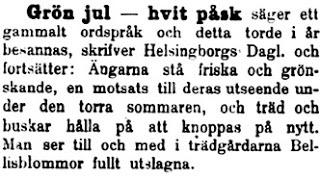 19120102_dalpilen